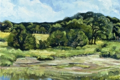 Hill Country Meadow-0il on canvas-16h x 20w in