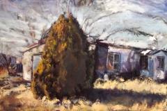 Marfa TX Tree-Oil on canvas-30w x 24h in