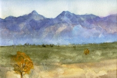 Arizona Desert View (I)-Watercolor on paper-16h x 20w in