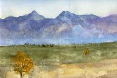 Arizona Desert View (I)-Watercolor on paper-16h x 20w in