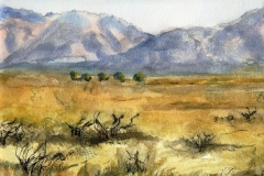 Arizona Desert View (II)-Watercolor on paper-16h x 20w in