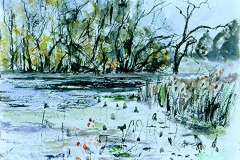 Brazos Bend Pond (I)-Watercolor on paper-11h x 15h in